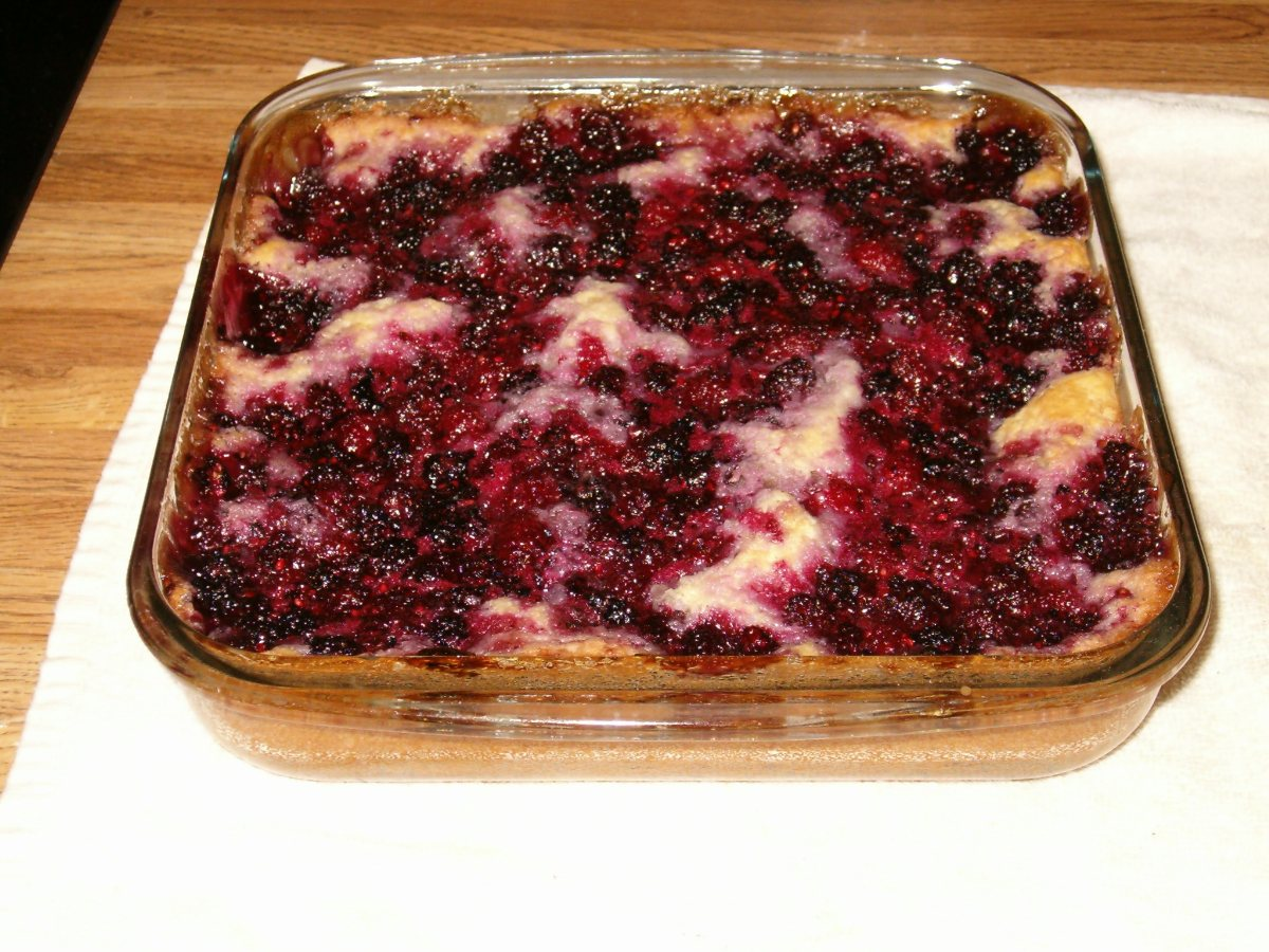 Blackberry Cobbler #2 Recipe — Dishmaps