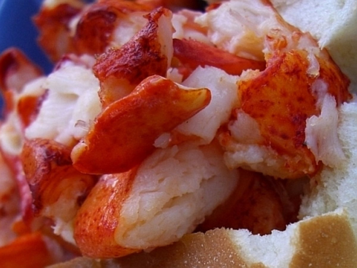 ... Appetizers Wraps and Rolls Lobster Rolls with Homemade Mayonnaise