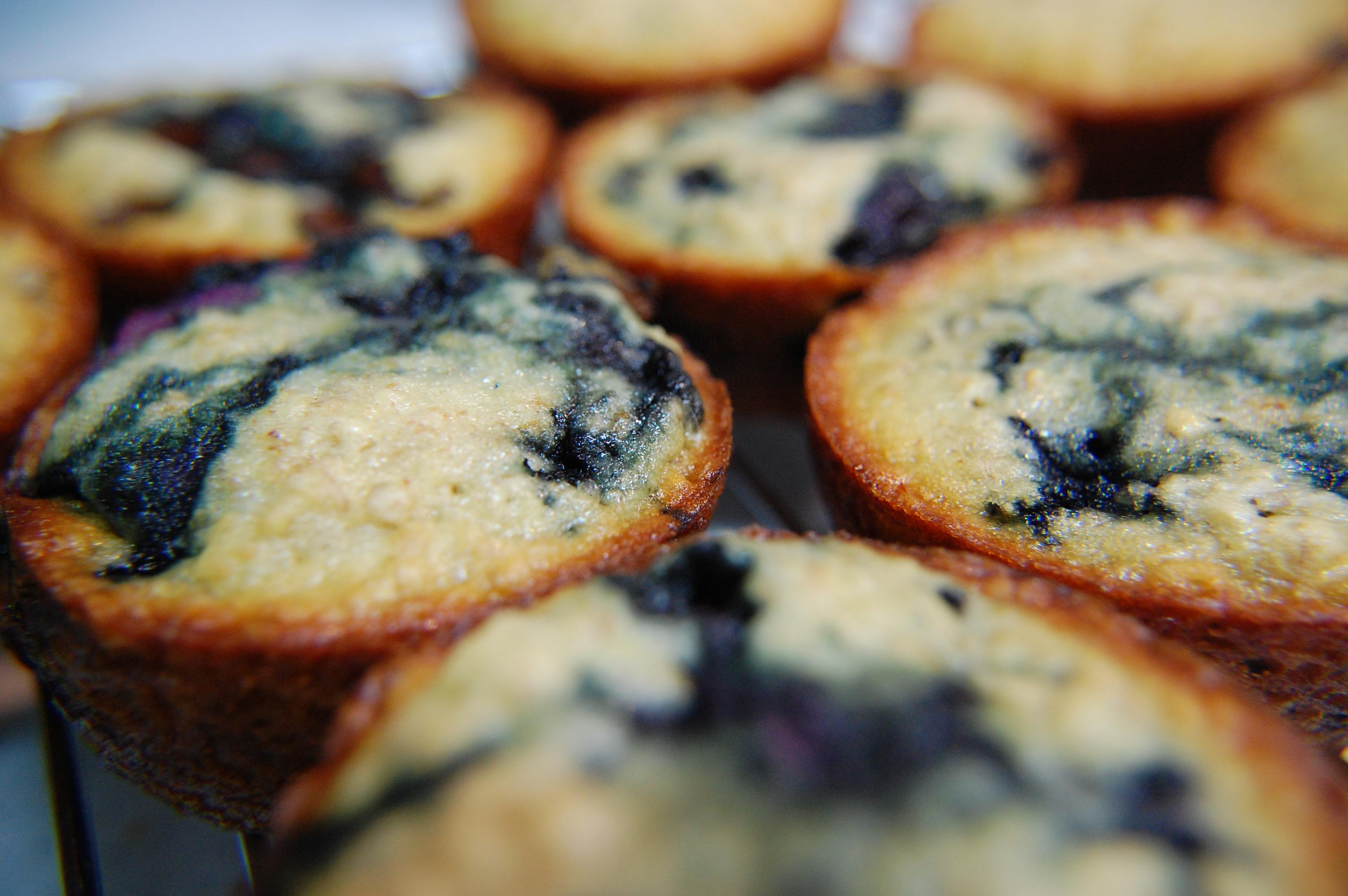 Low Fat High Fiber Muffin 34