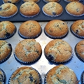 Blueberry and Sour Cream Muffins