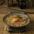 Chicken Noodle Soup - Asian Style