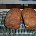 Family Style White Bread