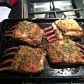 Herb Roasted Rack of Lamb