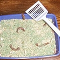 Kitty Litter Cake for Halloween