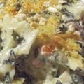 Main - Farfalle Mushroom Casserole