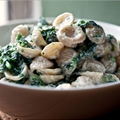 NYT Pasta With Walnut Sauce and Broccoli Raab