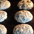 Oatmeal Chocolate Chip Coconut Chewy Cookies