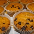 Pumpkin and Chocolate Chip Muffins