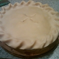 Serious Turkey Pot-Pie