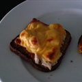 Simple Tuna Melt
