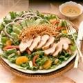 Turkey Bangkok Salad with Peanut Dressing