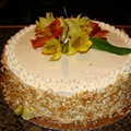 White Velvet Coconut Butter Cake
