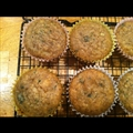 Zucchini Muffins
