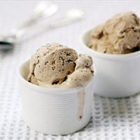 Coconut Chocolate Chip Ice Cream