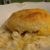 Creamed Chicken with Biscuits (19)