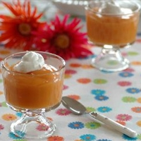 Fat-Free Pumpkin Pudding