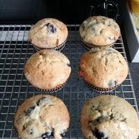 Frozen Blueberry Muffins