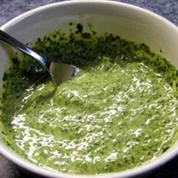 Indian Mint Pesto