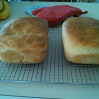 Kitchenaid White Bread