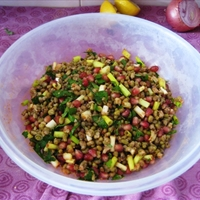Mung Bean, Scallion And Pomegranate Salad