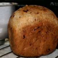 My First Loaf - Raisin Walnut Bread