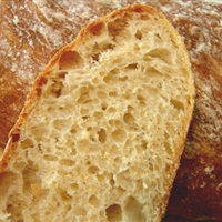 No Knead Ciabatta Bread from Chef John