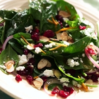 Ocean Spray Spinach Salad