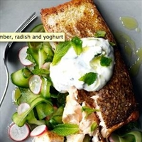 Spiced salmon with cucumber, radish and yoghurt