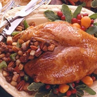 Turkey Breast with Sausage & Apricot Stuffing