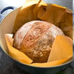 Almost No-Knead Whole-Wheat Bread