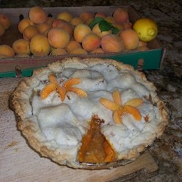 Apricot Lattice Pie
