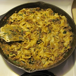 Beef Stroganoff- Unbelievably easy! (Kid-Friendly, Alcohol-Free)