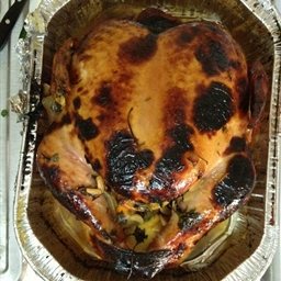 Best Turkey In The World Garaunteed!