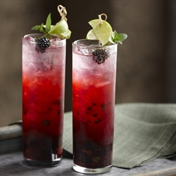 Blackberry Mint Mojito