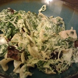 Cheese and Spinach Whole Grain Noodles