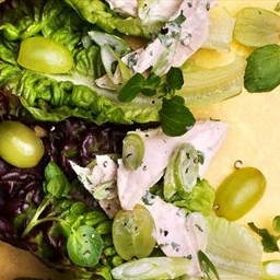 Chicken salad with tarragon and grapes