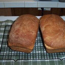 Family Style White Bread