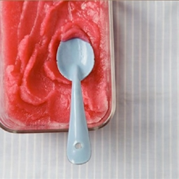 Grapefruit Pomegranate Champagne Sorbet