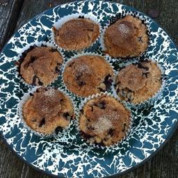 Meddybemps Blueberry Muffins