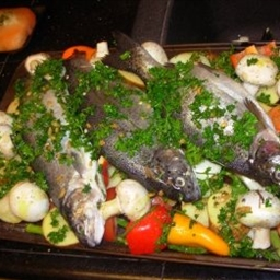Moroccan Fish Tagine with Chermoula