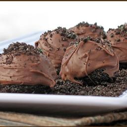 Oreo's Chocolate Surprise