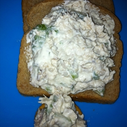 Plain tuna salad