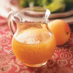 Citrus Salad Dressing/Marinade PureProactive Level One
