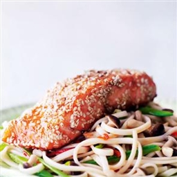 Salmon on Noodles
