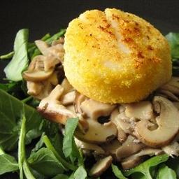 Seared Scallops on Braised Wild Mushrooms