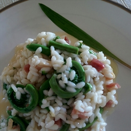 Wild Leek and Fiddlehead Risotto