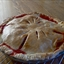 Basic Flaky Pie Crust