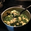 Chicken or Turkey Tortellini Soup