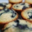 Low-fat High Fiber Blueberry Bran Muffins