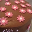 Strawberry Ice-Cream Cake covered in chocolate ganache
